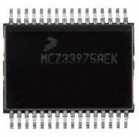 MCZ33810EK-飞思卡尔热门搜索IC